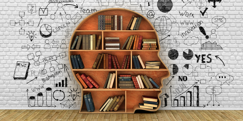 Bookcase in the shape of a head